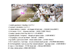 2008.04.20.happiness3-T.jpg